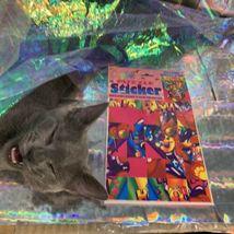 SEALED NEW OLD STOCK Lisa Frank Puzzle Sticker WOW JUMBO Hollywood Bear Rare HTF image 7