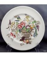 "Johnson Brothers Bird of Paradise Dinner Plate 10"" Multi-Colored Transfe... - $14.44"