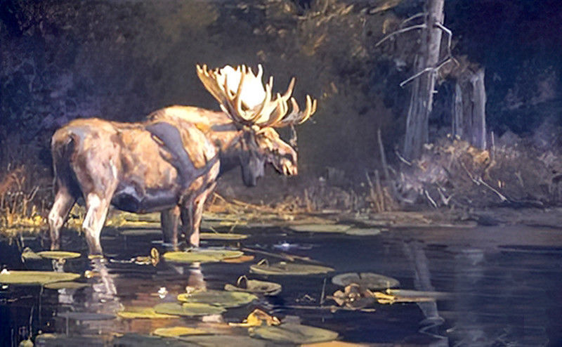 Primary image for A Distant Rival & Sanctuary 2 Bull Moose Wildlife Print by Luke Frazier Animals
