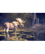 A Distant Rival & Sanctuary 2 Bull Moose Wildlife Print by Luke Frazier ... - $272.25