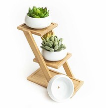 Ceramic Succulent Planter, Set of 3 Succulent Pots on Tiered Bamboo Indo... - $13.92