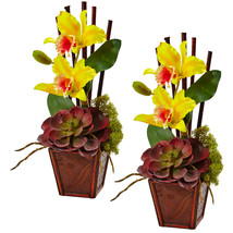 Cattleya Orchid and Succulent Arrangement (Set of 2) - $74.00