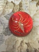 Vintage Scorpion Lucite Dome Paperweight Tucson AZ Souvenir Small Brown Scorpion - $6.99