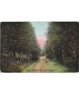 Vintage Unused Orrs Island, Me Glitter Colored Postcard - $3.00