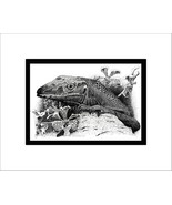 Rough-necked Monitor Pen and Ink Print, Reptile, Lizard - $24.00
