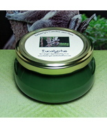 Eucalyptus 6 oz. Tureen Jar Wickless Candle - $6.00