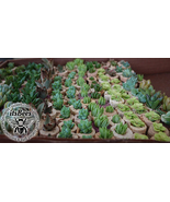 25 Wine Cork Plant Favors - Your Choice: Succulent, Cactus, Haworthia, A... - $50.00