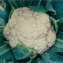 Snow Crown Cauliflower Seed, Vegetable Seeds, Ship From US - $16.00