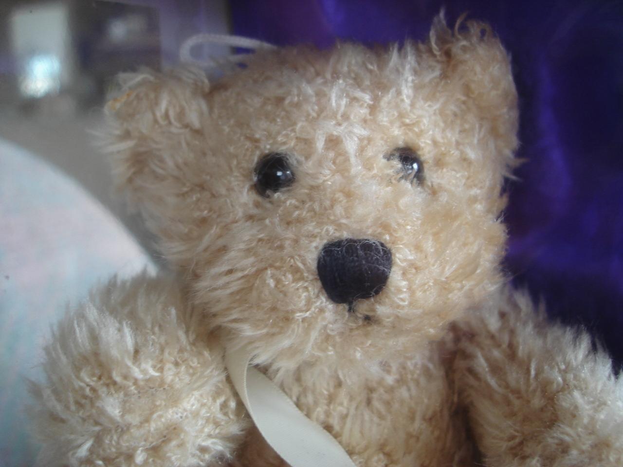Elizabeth Taylor's 5 oz Passion EaudeToilette W Teddy Bear Doll