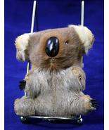 Souvenir Koala Bear - $1.20