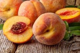 Hardy Peach fruit tree seedling edible LIVE PLANT - $39.49