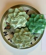 3 PC SET Green Succulent Handmade Soap,Lush Emerald Scent,Goat's Milk,UC... - £9.44 GBP
