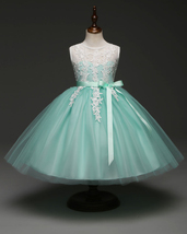 Mint Green Tulle Short Flower Girl Dress With Lace Appliqued Kids Party ... - $32.25