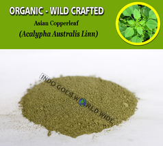 POWDER Asian Copperleaf Acalypha Australis Organic Wild Crafted Natural Herbs - $7.85+