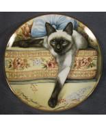 BLUE EYES Siamese Cats Collector Plate Daphne Baxter Franklin Mint Porcelain - $19.75