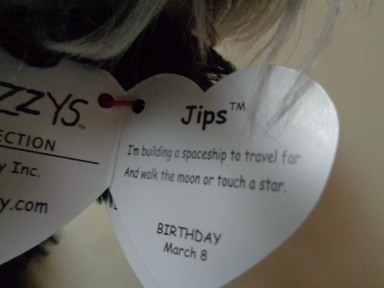 TY Frizzys Collection Beanie JIPS NWT March Birthday Spaceship