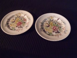 "Johnson Brothers Windsorware Garden Bouquet 8"" Porcelain Salad Plate Pair - $19.80"