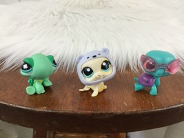 Littlest Pet Shop Lot Of 3 Seal Turtles Accessories Hat Goggles #6 - $9.89