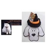 Halloween Led Sorcière Chapeau pour Chiens & Chats - S/M - Éclairer - Fa... - $10.45