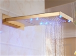 Primary image for Lenox LED WaterFall/RainFall Gold Finish Shower Head