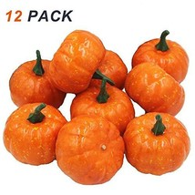Coolrunner 12 Pack Artificial Fruits, Realistic Fall Mini Artificial Pum... - £10.68 GBP