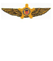 US Secret Service USSS Aviation Agent Qualified Pilot Gold Wings Service Patch V - $13.99