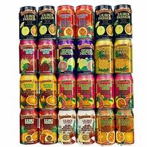 Hawaiian Sun Premium Tropical Juice Drink Party Bundle of 10 Assorted Flavors 24