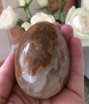 Marble, Onyx, Fossil Collectors Egg Brown Genui... - $15.58