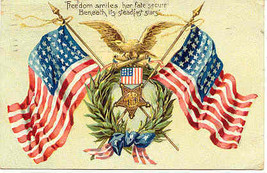 Freedom Smiles Her fate Secure Vintage 1908 Post Card  - $8.00