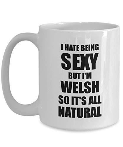 Primary image for Sexy Welsh Mug Funny Gift for Husband Wife Bf Gf Wales Pride Novelty Gag Coffee
