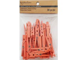 Recollections Clothespins Embellishments, Pink #470857