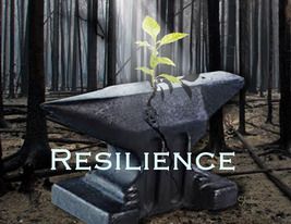 Inspirational Encouragement Greeting Card: Resilience - $5.00