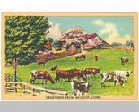Postcard15a thumb155 crop