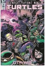 Teenage Mutant Ninja Turtles 95 (IDW 2019) Cover B  (Priority Mail Shipp... - $25.00