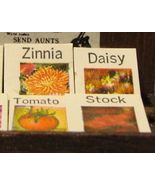 DOLLHOUSE Wood Box of Seed Packets town square - $2.70