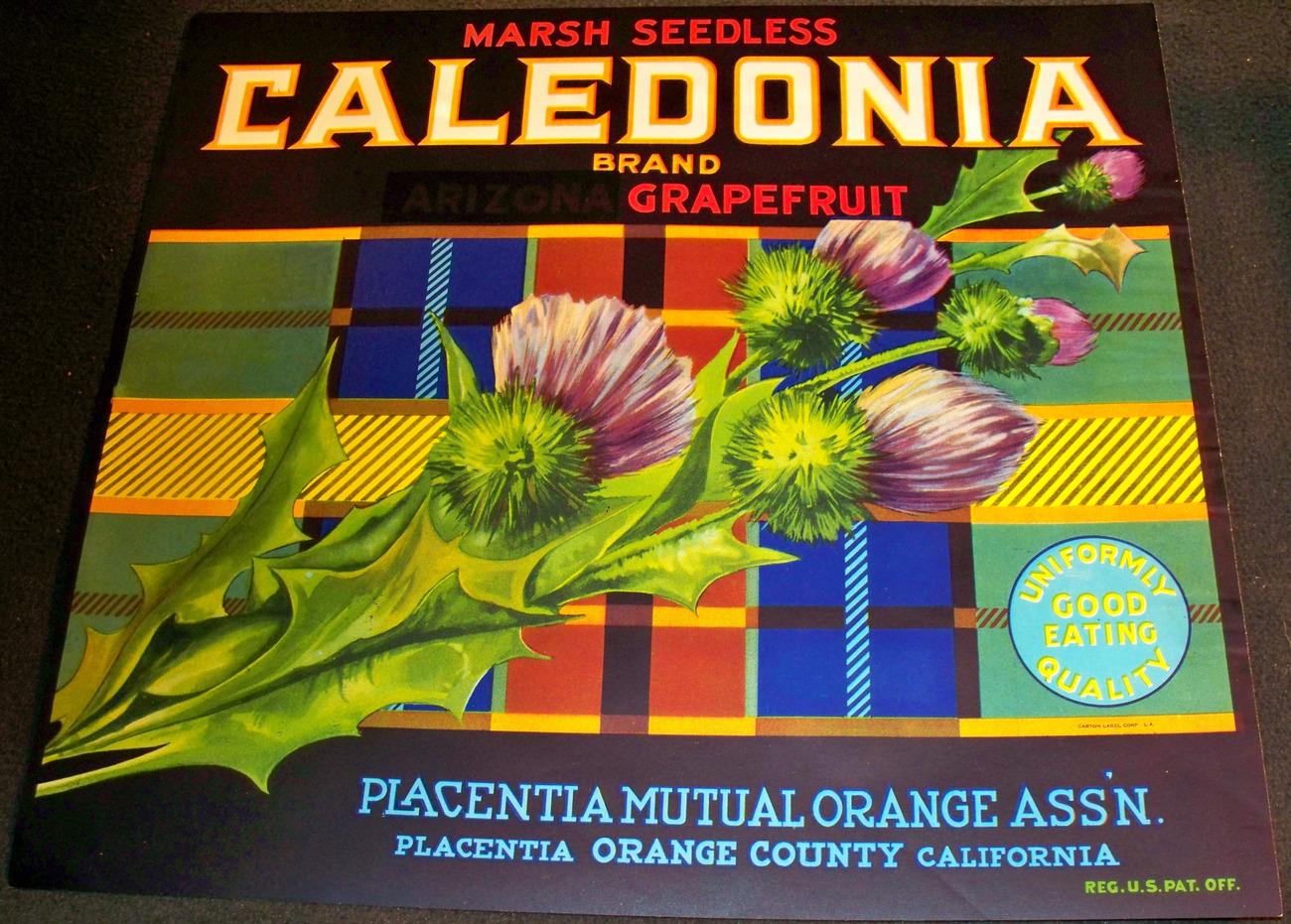 Scottish Memorabilia, Caledonia Crate Label, 1930's