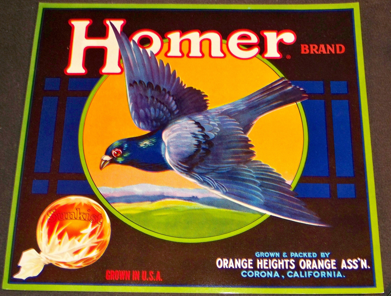 Smart Pigeon! Homer Crate Label with Green Border, 1940's