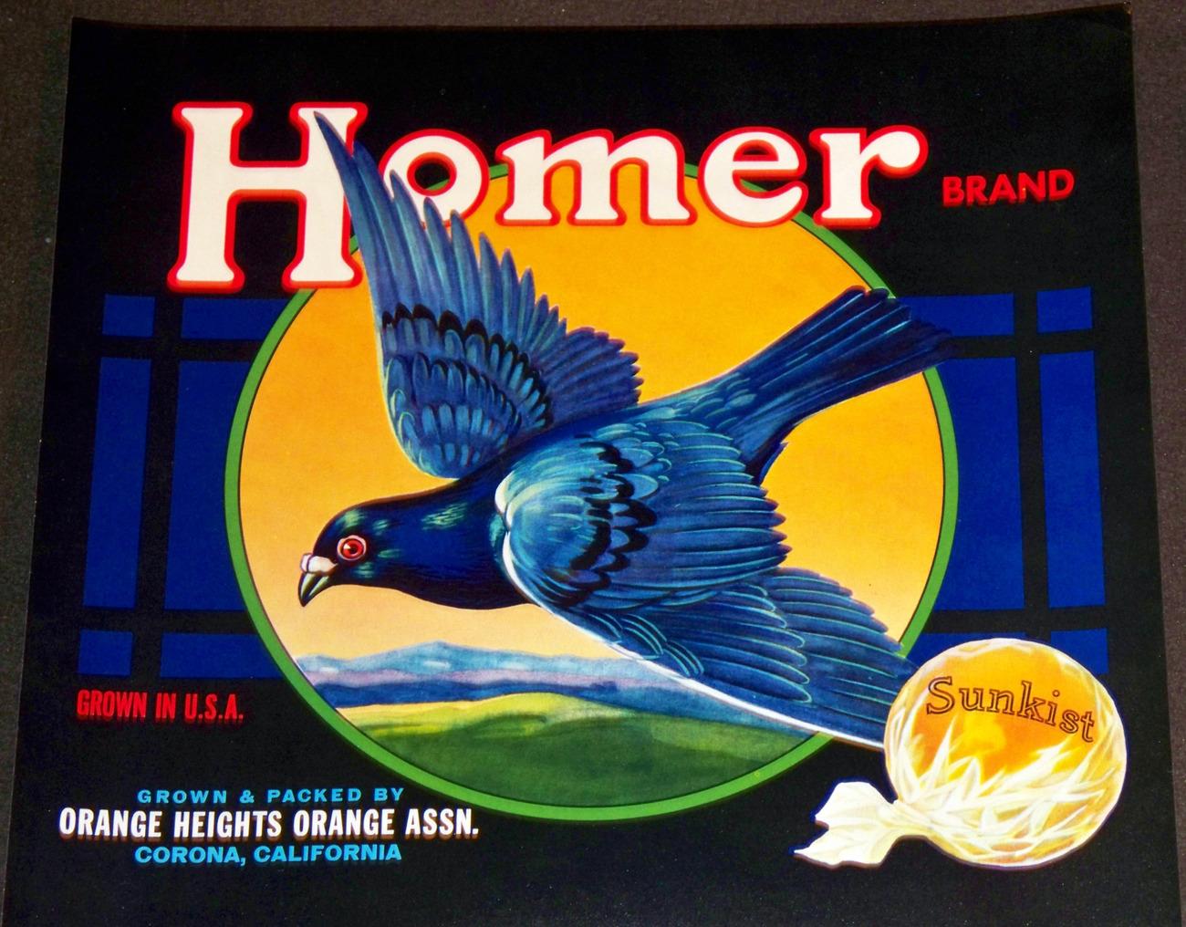 Smart Pigeon! Homer Crate Label, 1940's