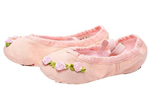 Dance Class Ballet Shoes/Canvas Dance Shoes For Pretty Girl (19.5CM Length)