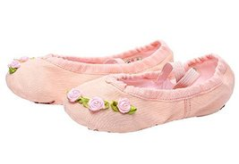 Dance Class Ballet Shoes/Canvas Dance Shoes for Pretty Girl (19.5CM Length) Pink