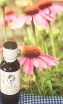 Echinacea Tincture 1 oz - $9.75