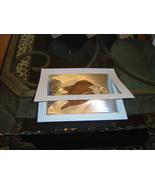Custom White Mat for Dufex Foils (Item #11237792) - $1.99