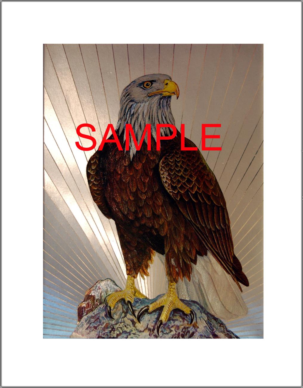 Custom White Mat for Dufex Foils (Item #11237792)