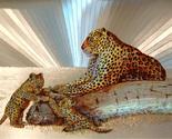 654431 cheetah and cubs thumb155 crop