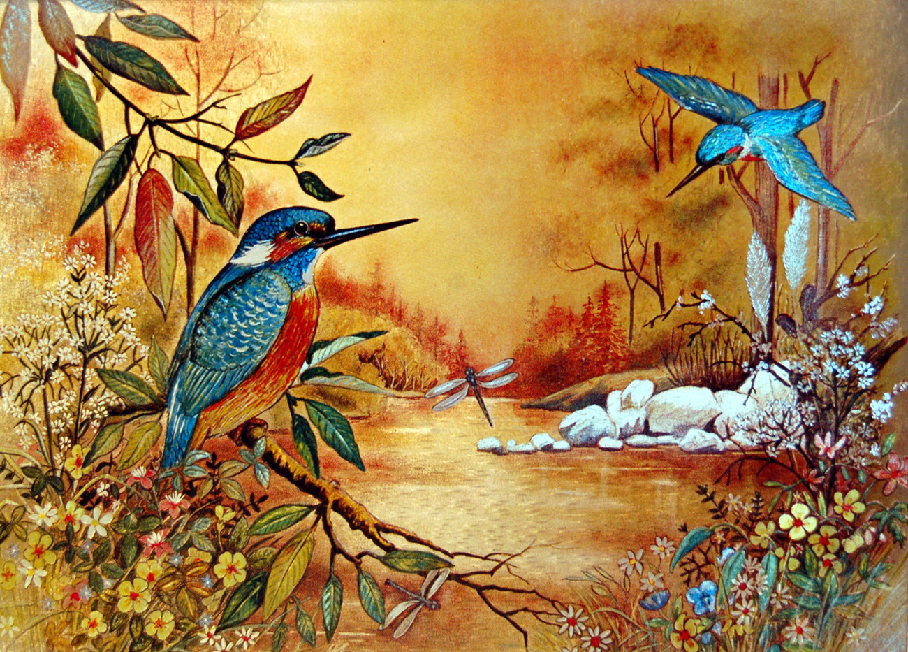 152594 hummingbirds