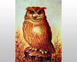 000000 large barn owl thumb155 crop