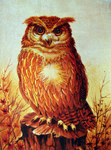 Large Owl on Stump (Dufex Foil Print #000000) - $4.99