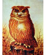 Large Owl on Stump (Dufex Foil Print #000000) - $4.99