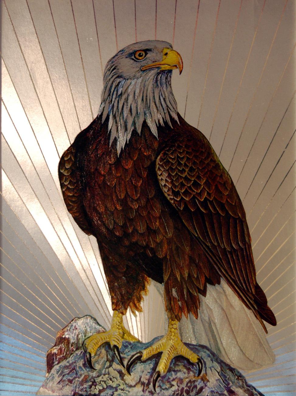 654433 bald eagle