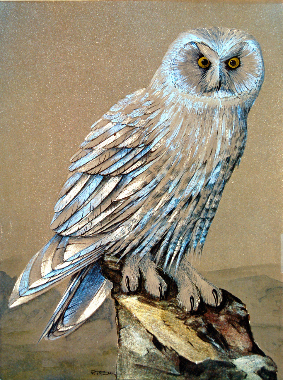 156016 snowy owl
